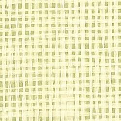 Обои Thibaut Grasscloth Resource, арт. T5072