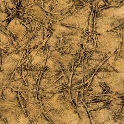 Обои Vahallan Papers Needles, арт. Monterey