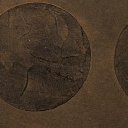 Обои Vahallan Papers Tercio, арт. Odyssey