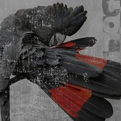 Обои Wall&deco Gio Pagani 13, арт. GPW1301