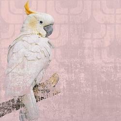 Обои Wall&deco Gio Pagani 13, арт. GPW1303