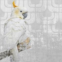 Обои Wall&deco Gio Pagani 13, арт. GPW1304
