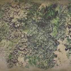Обои Wall&deco Life 15, арт. WDVG1501