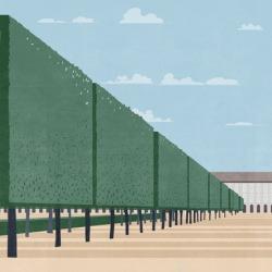 Обои Wall&deco Think Tank 14, арт. TTQP1401