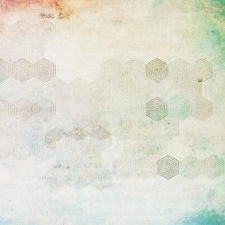 Обои Wall&deco Wet 14, арт. WET-MO1401