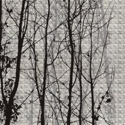 Обои Wall&deco Wet 15, арт. WET-FG1502
