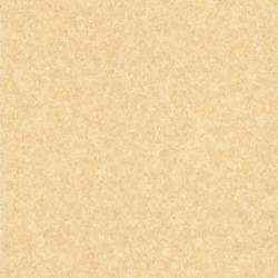 Обои Wallquest Blaze of Glory, арт. 989-26959