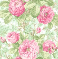 Обои Wallquest English Rose, арт. EN10104